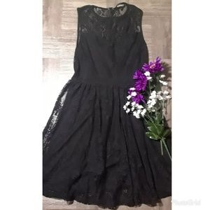 EXPRESS sleeveless lace fit n flare dress